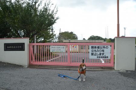 20141026旧中郷小学校跡12