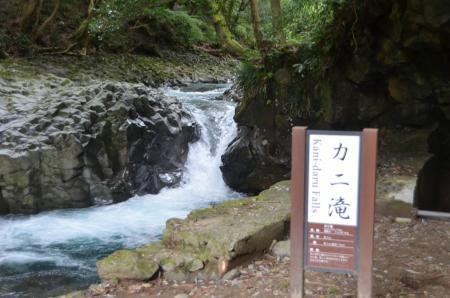 20141027河津七滝①カニ滝05