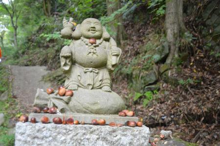 20141027河津七滝①カニ滝02