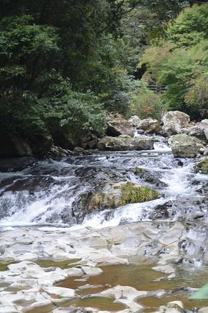 20141027河津七滝②初景滝03