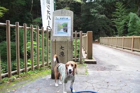 20141027河津七滝②初景滝01