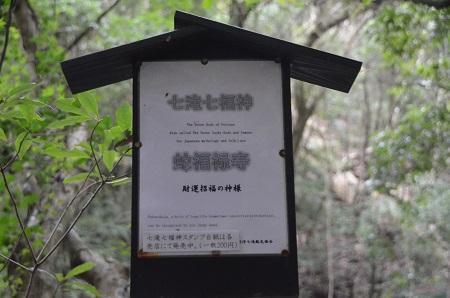 20141027河津七滝③蛇滝05