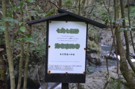 20141027河津七滝④エビ滝02