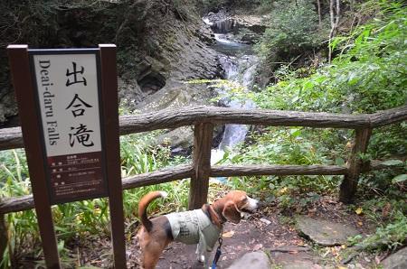 20141027河津七滝⑥出合滝02