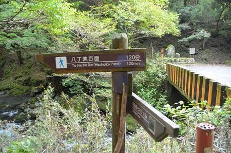 20141027二階滝12