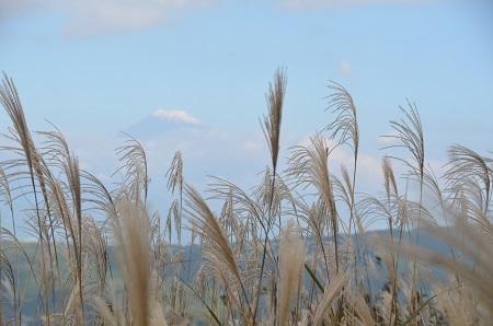 20141028 巣雲山21