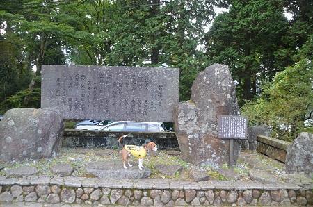 20141028 賜箱根公園01