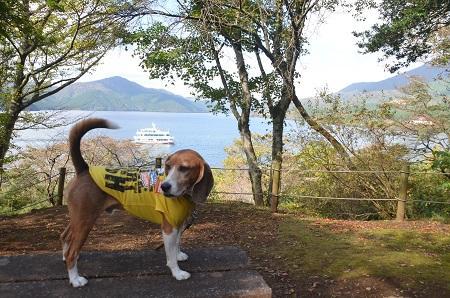 20141028 賜箱根公園08