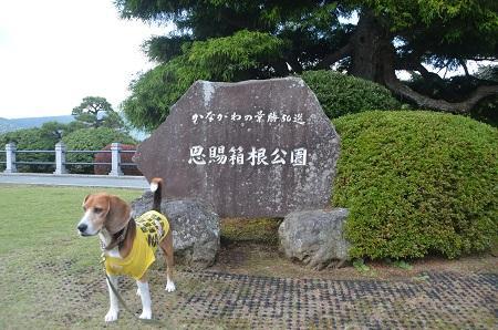 20141028 賜箱根公園17