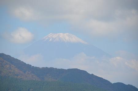 20141028 賜箱根公園13