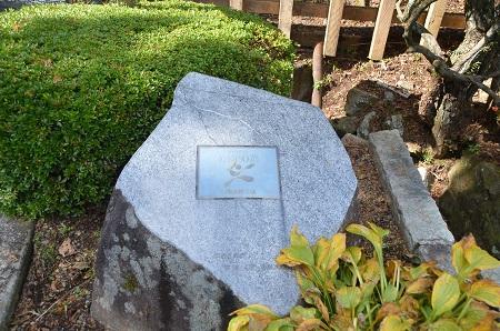 20141028 賜箱根公園26