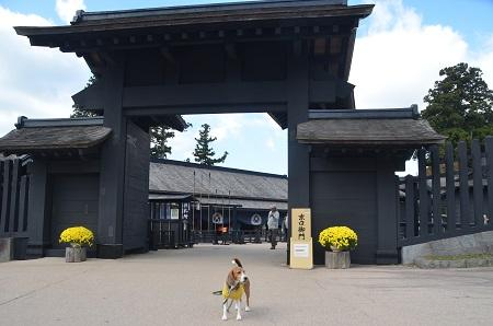 20141028 箱根関所跡04