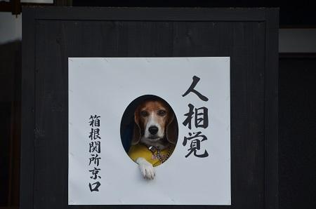 20141028 箱根関所跡05