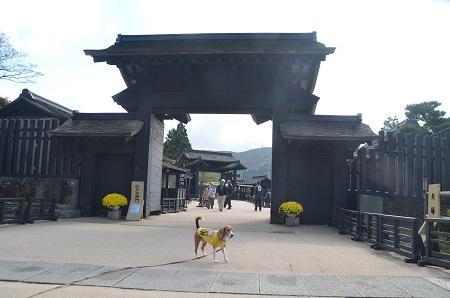 20141028 箱根関所跡03
