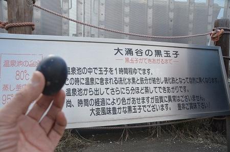 20141028 大涌谷16
