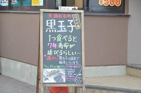 20141028 大涌谷19