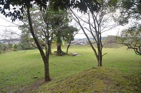 20141102佐倉城址公園22