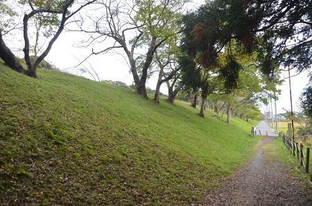 20141102佐倉城址公園27