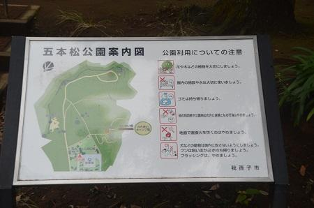 20141112五本松公園02