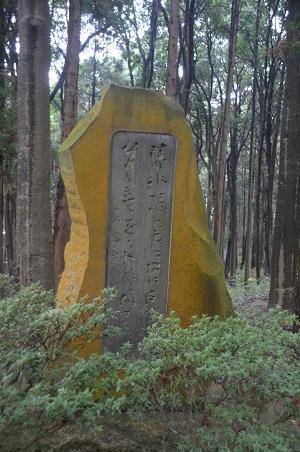 20141112五本松公園14