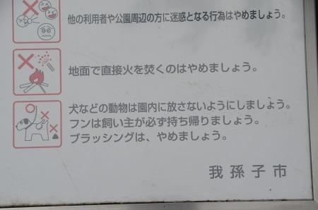 20141112五本松公園23