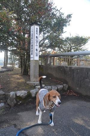 20141121亀山湖・亀山ダム08