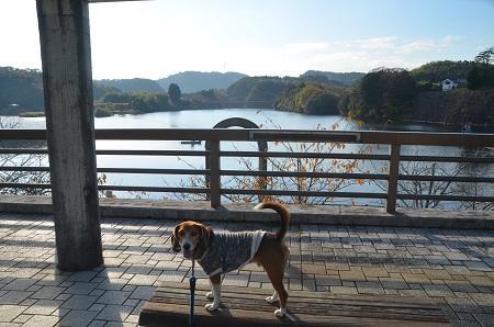 20141121亀山湖・亀山ダム28