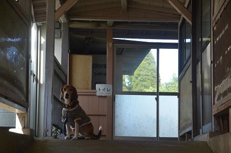 20141121蔵玉小学校19