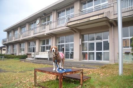 20141125奈古谷分校11