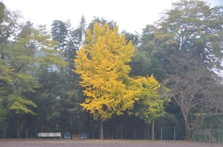 20141125奈古谷分校09