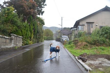 20141125山木兼隆館04