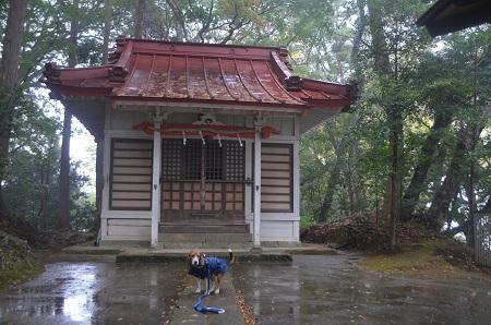 20141125韮山城址18