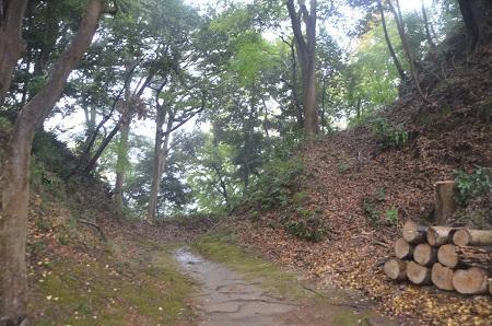 20141125韮山城址20