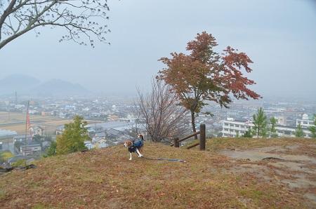 20141125韮山城址30