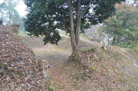 20141125韮山城址38