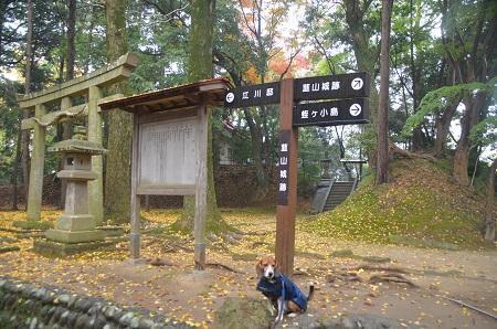 20141125韮山城址46