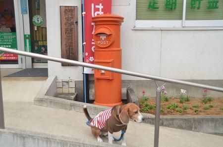 20141125丸ポスト 伊豆の国03