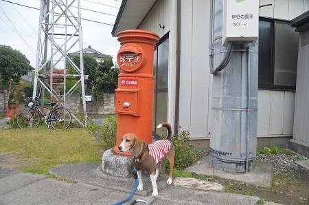 20141125丸ポスト 伊豆の国10