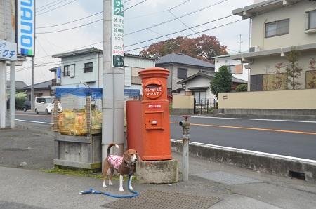 20141125丸ポスト 伊豆の国07