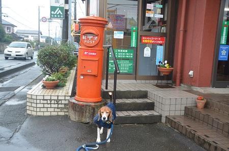 20141125丸ポスト 伊豆の国35