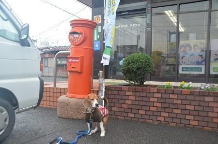 20141125丸ポスト 伊豆の国48