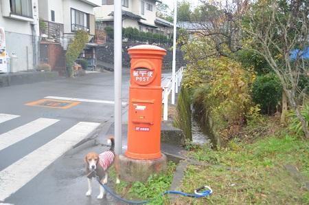 20141125丸ポスト 伊豆の国64