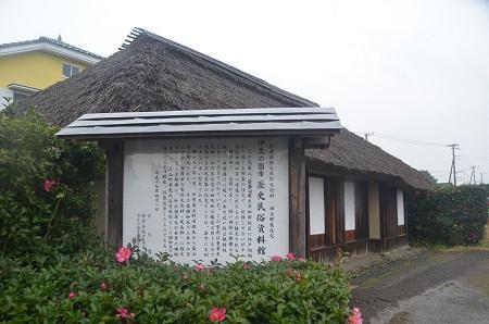 20141125蛭ヶ小島24