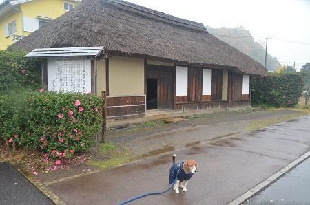 20141125蛭ヶ小島25
