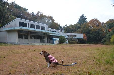 20141125高原分校09