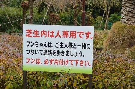 20141126お林展望公園06