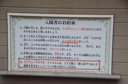 20141126お林展望公園04