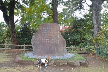 20141126お林展望公園14