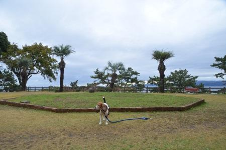 20141126お林展望公園13