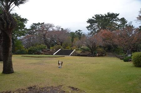 20141126お林展望公園23